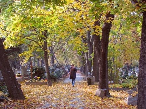 autumn cemetery grief