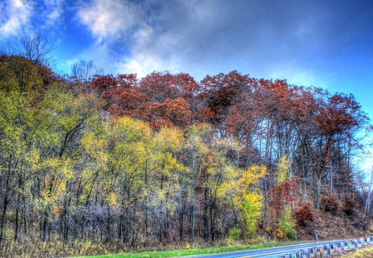 autumn colors by the roadside at wildcat mountain state park wisconsin