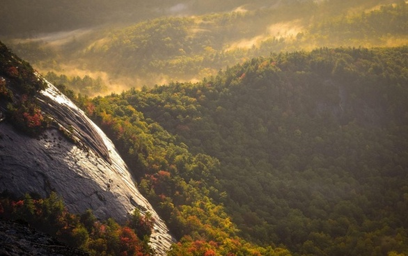 autumn daytime fall fog forest hill landscape mist