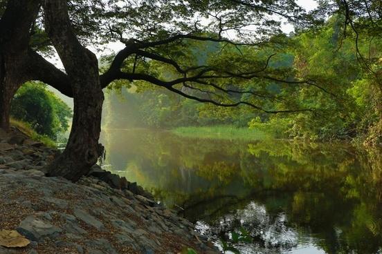 autumn daytime fall foliage forest idyllic lake