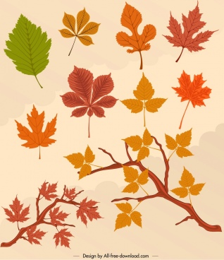 autumn design elements colored leaves icons decor