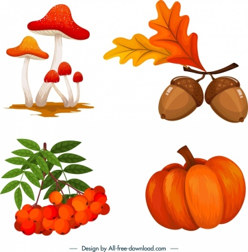 autumn design elements mushroom chestnut pumpkin cherry sketch