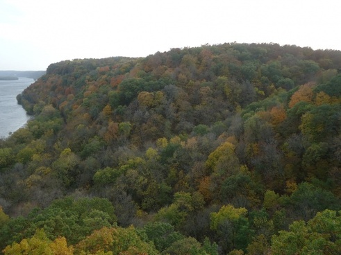 autumn forest at effigy mounds iowa