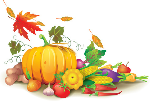 autumn harvest elements vector background set