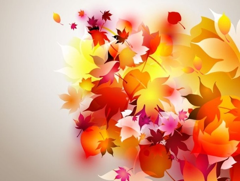 autumn leaves background colorful decoration