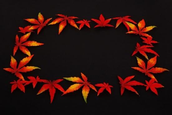 autumn leaf frame on black
