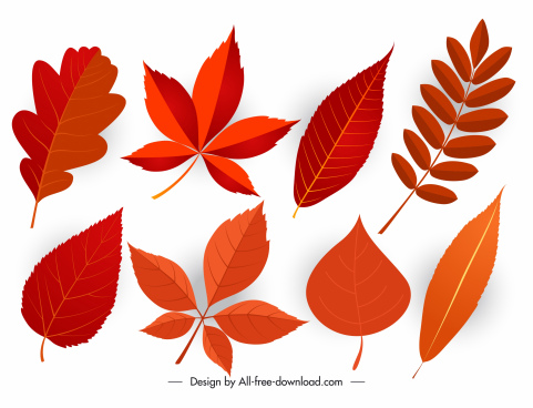 autumn leaf icons modern flat colored shapes sketch