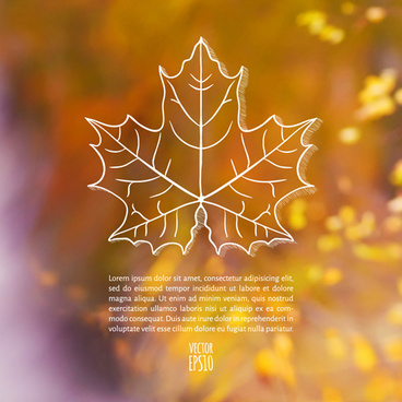 autumn leaf outline with blurred background vector
