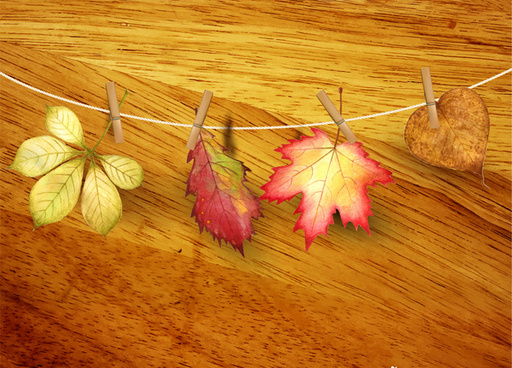 autumn leaf realistic on wooden background