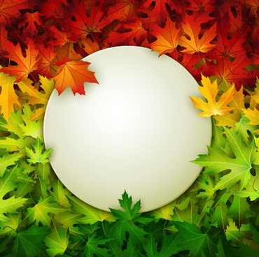 autumn leaves beautiful background art