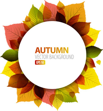 autumn leaves frame vector background