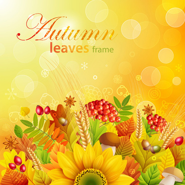 autumn leaves frame vector set