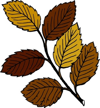 Autumn Leaves On Branch clip art
