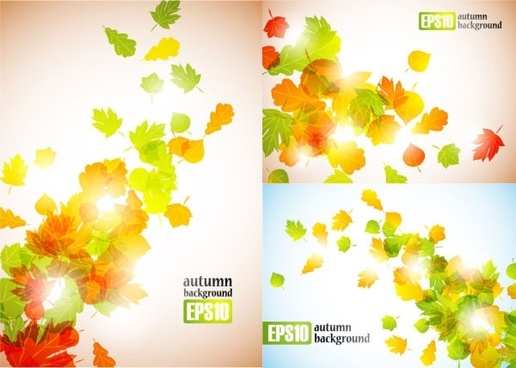 autumn leaves vector 2