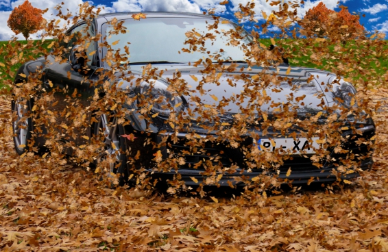 yellow leaves splashing around modern car