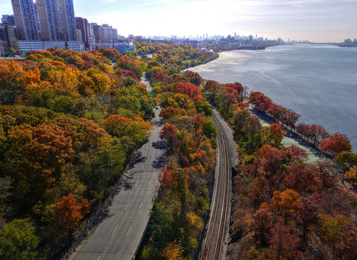 autumn manhattan