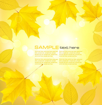autumn of maple leaf vector background set