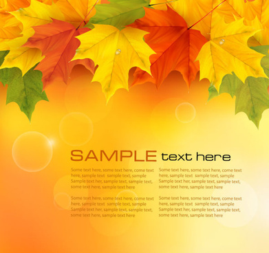 autumn of maple leaf vector background set