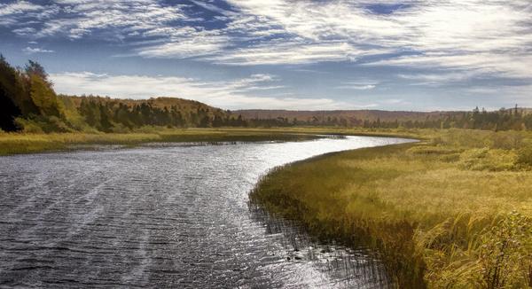 autumn river scene