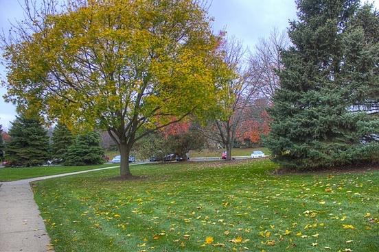 autumn trees in madison wisconsin