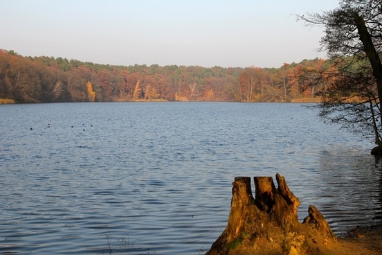 autumn trees schlachtensee