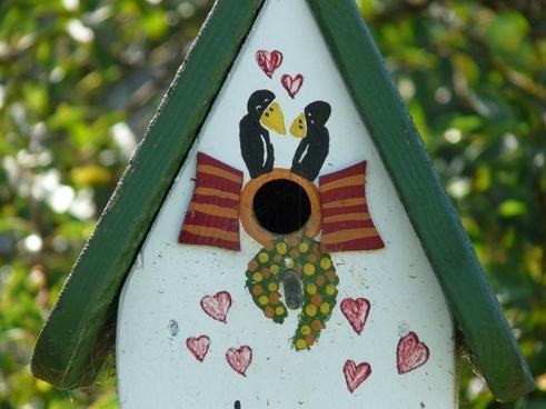 aviary bird feeder feeding