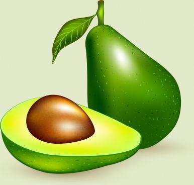 avocado advertising shiny green icon decoration