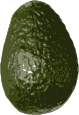 Avocado clip art