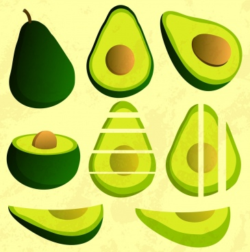 avocado icons various shapes green design