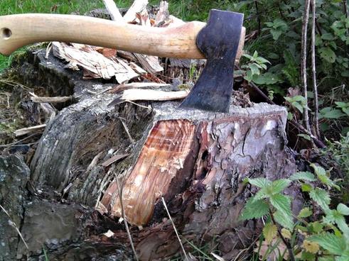 ax stump wood