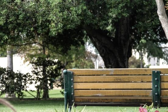 back of wooden park bench