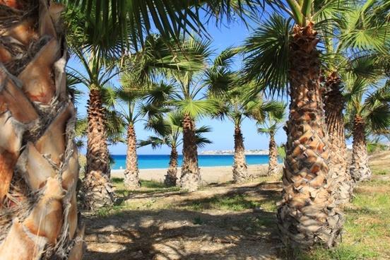 background beach blue