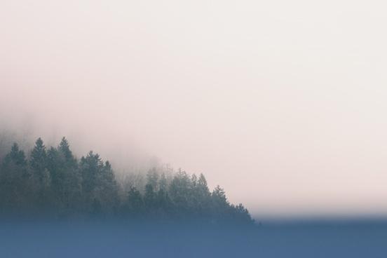 background cold fog foggy forest lake landscape