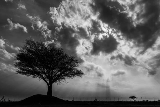 backlit black and white cloud dark dramatic landscape