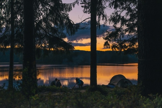 backlit conifer evening evergreen lake landscape