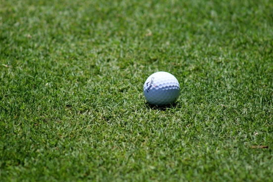 small golf ball on green course