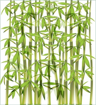 bamboo background modern bright green decor