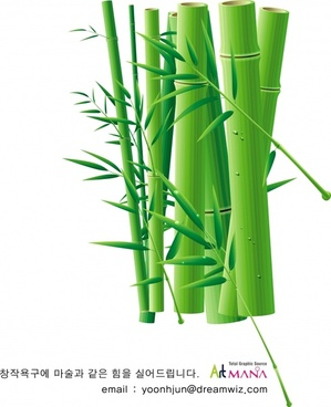 bamboo background closeup design green icon decor