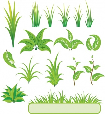 nature design elements green leaf grass icons