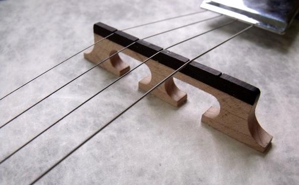 banjo music five stringed instrument