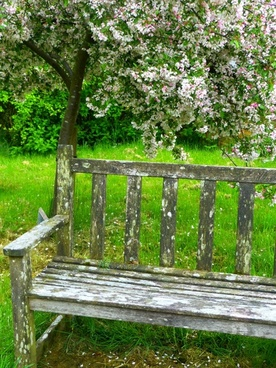 Remarkable Garden Bench Free Stock Photos Download 3 711 Free Stock Ibusinesslaw Wood Chair Design Ideas Ibusinesslaworg