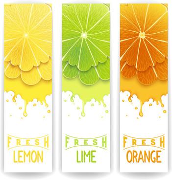 banner fresh fruit drink vector