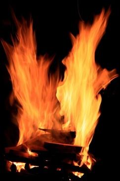 barbecue bbq fire