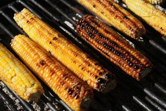 barbecue corn fresh