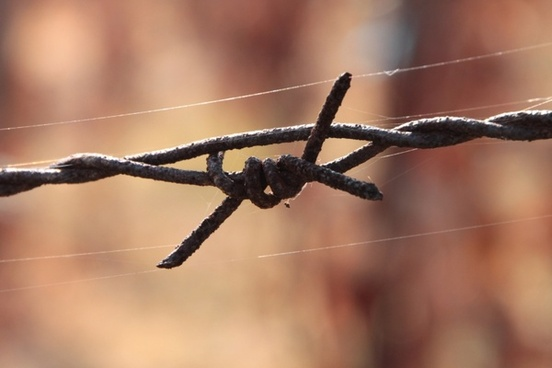 barbed close-up iron