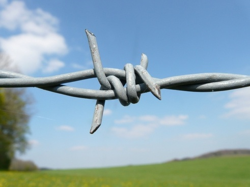 barbed wire fence barbed wire fence