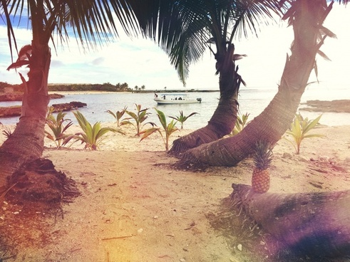 barefoot beach coast exotic hammock holiday idyllic
