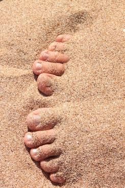 barefoot beach covered
