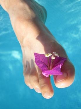barefoot blossom care