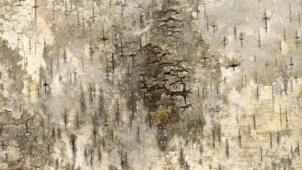 bark grunge texture